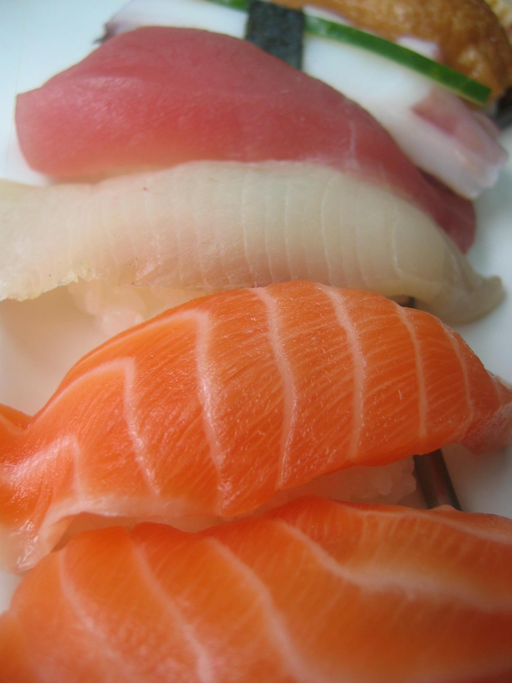 Is fish good for the brain the memory practice for What fish is good for you